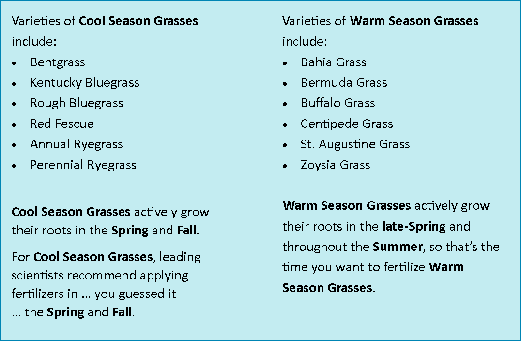 cool v warm season grasses