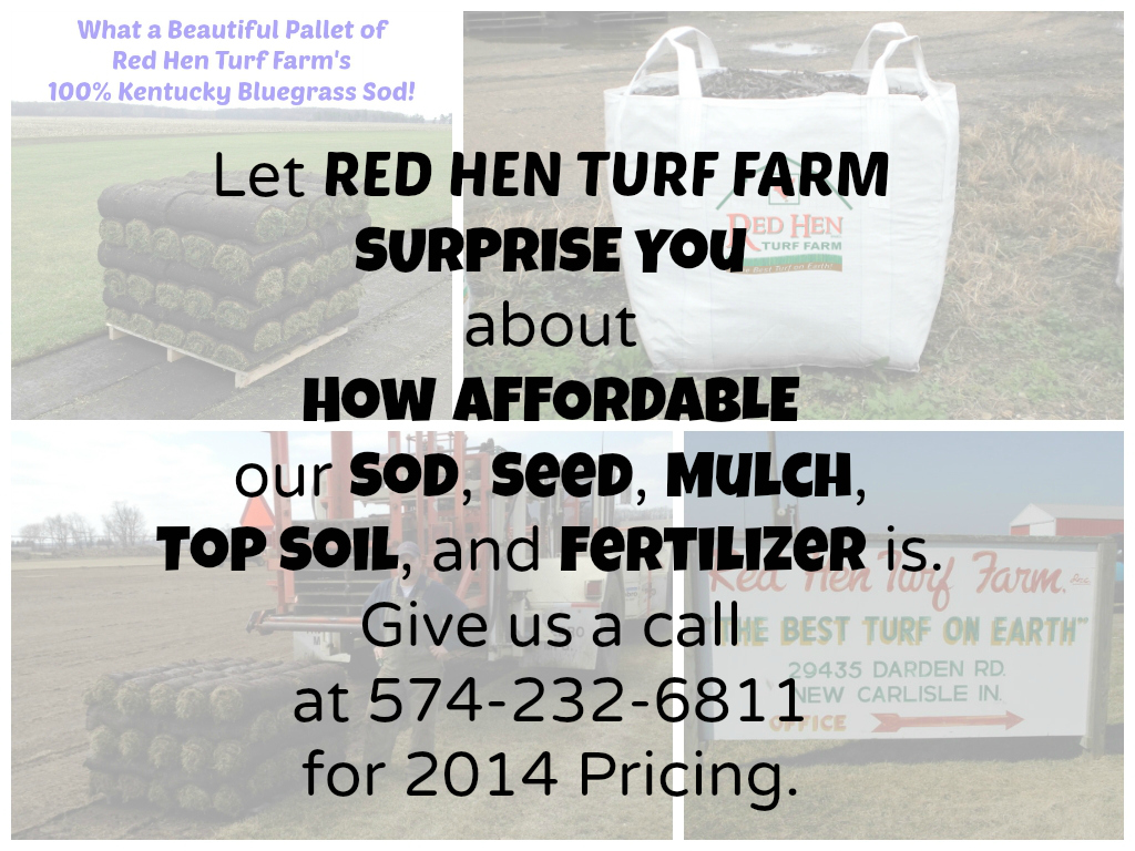 So often, we're told that it's truly SURPRISING at how affordable our SOD is!