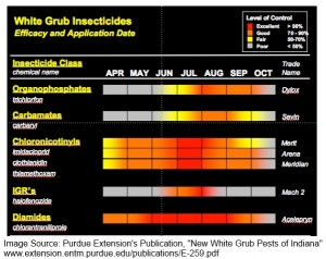 "Click on the Image to Read Purdue Extension's ""New White Grub Pests of Indiana"""