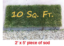 Piece of Sod